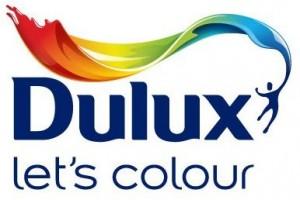 dulux paint tin