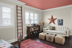 Salmon Pink Emulsion Paint on Ceiling with White Coving
